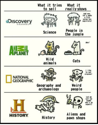 "Animals, Cats, and Club: What it tries What it  to sell  really shows  And now  let s make  a fire  sPusing two  Discovery  squirrels!  CHANNEL  People in  the jungle  Science  Hew!  Uv  PLANET  Wild  animals  Cats  l like  to eat  ocrayons!  NATIONAL  GEOGRAPHIC  Geography and  archaeology  Weird  people  Let se  call sy  buddy  who s  expert  Aliens and  pawn shops  HISTORY  History <p><a class=""tumblr_blog"" href=""http://laughoutloud-club.tumblr.com/post/152428197237"">laughoutloud-club</a>:</p> <blockquote> <p>What They Sell Vs. What They Actually Show</p> </blockquote>"