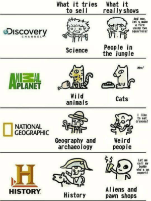 Animals, Cats, and Fire: What it tries What it  to sell  y shows  And now.  let s make  a fire  using two  squirreis  eDiscovery  CHANNEL  People in  Science tjngle  New!  PLANET  Wild  animals  Cats  I like  o eat  crayons!  O  NATIONAL  GEOGRAPHIC  Geography andWeird  people  archaeology  $S  Let se  call my  buddy  vho s an  expert!  Aliens and  pawn shops  HISTORY  History Thats really accurate