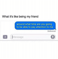 Time, Girl Memes, and Friend: What it's like being my friend  around what time are you going  to be able to pay attention to me  Delivered  IMessage Hellurr hi hi hi hellooo