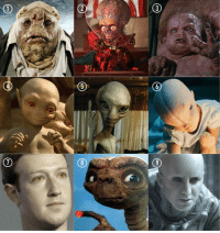 Memes, Alien, and 🤖: What kind of alien are you?