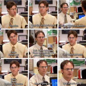 Dwight getting confused: What kind of bear is best? That's a dievlous question  Question  False  Black bea  Wel that's debatable  There  are basicalytwe  Fact bears eat beets  SChHOOors of thought  Bears  Beets  Battlestar Galactica  hatis going on  What are yowooing Dwight getting confused