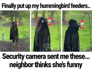 What kind of bird is this? by pantsRrad MORE MEMES: What kind of bird is this? by pantsRrad MORE MEMES