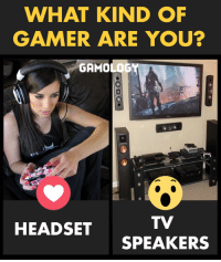 gamer: WHAT KIND OF  GAMER ARE YOU?  GAMOLOGY  HEADSET  SPEAKERS
