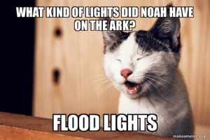 Noah, Terrible Facebook, and Ark: WHAT KIND OF LIGHTS DID NOAH HAVE  ON THE ARK?  FLOOD LIGHTS  makeameme.org Cassius the Comedian Cat Joke #172