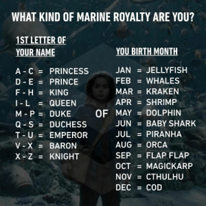 Whale, whale, whale, what do we have here?: WHAT KIND OF MARINE ROYALTY ARE YOU?  1ST LETTER OF  YOUR NAME  YOU BIRTH MONTH  A C PRINCESS  D E PRINCE  F - H KING  JAN = JELLYFISH  FEB  WHALES  MAR KRAKEN  APR  SHRIMP  QUEEN  I - L  M P DUKE  Q S DUCHESS  T-U EMPEROR  V-X = BARON  X Z KNIGHT  OF MAY DOLPHIN  JUN  BABY SHARK  JUL  PIRANHA  AUG ORCA  SEP  FLAP FLAP  OCT  MAGICKARP  CTHULHU  NOV  DEC COD  II  II Whale, whale, whale, what do we have here?