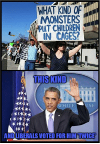 Children, White, and Monsters: WHAT KIND OF  MONSTERS  PUT CHILDREN  IN CAGES?  THIS KIND  WHITE  USE  ANDLIBERALS VOTED FOR HIM'TWICE