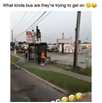 Af, Funny, and Lmao: What kinda bus are they're trying to get one Lmao im weak af 😂💀