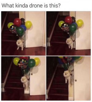 tastefullyoffensive: The best kind.(via cabbagecat): What kinda drone is this?  Happy  Happy tastefullyoffensive: The best kind.(via cabbagecat)