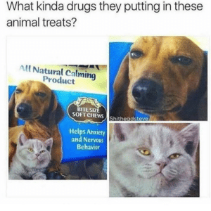 'All natural calming product': What kinda drugs they putting in these  animal treats?  All Natural Calming  Product  TE SIZE  SOFT CHEWS Shitheadsteve  Helps Anxiety  and Nervous  Behavior 'All natural calming product'