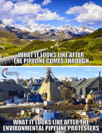 Memes, 🤖, and Usa: WHAT LOOKS LIKE AFTER  THE PIPELINE COMES THROUGH  TURNING  POINT USA  WHATITLOOKS LIKE AFTER THE  ENVIRONMENTAL PIPELINEPROTESTERS The Protesters Clearly Don't Care About The Environment... #BigGovSucks