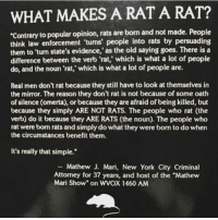 """Thoughts? (Pic @dondivamagazine): WHAT MAKES A RAT A RAT?  Contrary to popular opinion, rats are born and not made. People  think law  them to 'turn state's evidence,' as the old saying goes. There is a  difference between the verb 'rat,' which is what a lot of people  do, and the noun 'rat,' which is what a lot of people are.  enforcement 'turns' people into rats by persuading  Real men don't rat because they still have to look at themselves in  the mirror. The reason they don't rat is not because of some oath  of silence (omerta), or because they are afraid of being killed, but  because they simply ARE NOT RATS. The people who rat (the  verb) do it because they ARE RATS (the noun). The people who  rat were born rats and simply do what they were born to do when  the circumstances benefit them.  It's really that simple.""""  Mathew J. Mari, New York City Criminal  Attorney for 37 years, and host of the """"Mathew  Mari Show"""" on WVOX 1460 ANM Thoughts? (Pic @dondivamagazine)"""