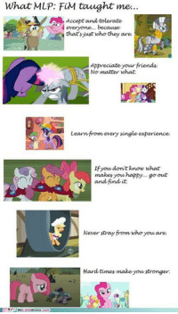 mlp fim: What MLP: FiM taught me.  Accept and tolerate  everyone... because  that's just who they are  Appreciate yourfriends.  No matter what  Learn from every single experience  If you don't know what  makes you happy... go out  and find it.  Never stray from who youare  Hard times make you stronger.