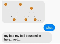 Bad, Wyd, and Ball: what  my bad my ball bounced in  here...wyd