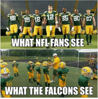 Hahaha that's the best so far nfl nflmemes falcons patriotsnation steelers playoffsnaespn: WHAT NFL FANS SEE  WHAT THE FALCONS SEE Hahaha that's the best so far nfl nflmemes falcons patriotsnation steelers playoffsnaespn