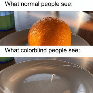 What, Normal, and People: What normal people see:  What colorblind people see: