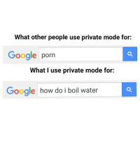 Private Browser memes? - BUY BUY BUY: What other people use private mode for:  Google  porn  What I use private mode for:  Google  how do i boil water Private Browser memes? - BUY BUY BUY