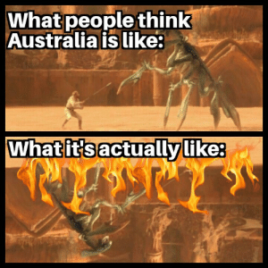 meirl: What people think  Australia is like:  What it's actually like: meirl
