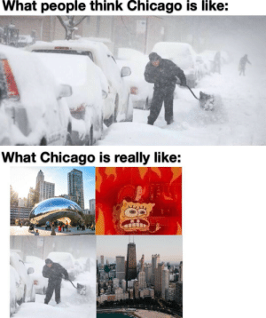 Beannnnnnnnnn: What people think Chicago is like:  What Chicago is really like: Beannnnnnnnnn