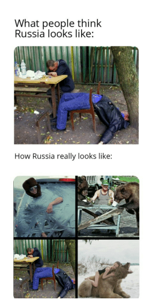Russia, How, and Think: What people think  Russia looks like:  How Russia really looks like: Welcome to Russia.