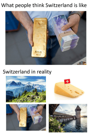 rich ass: What people think Switzerland is like  995.0  Switzerland in reality  35.0  SurEALAND  2011 rich ass