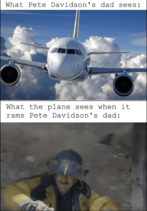 Dad, Rams, and Plane: What Pete Davidson' s dad sees:  What the plane sees when it  rams Pete Davidson' s dad: Shiiiiiiii