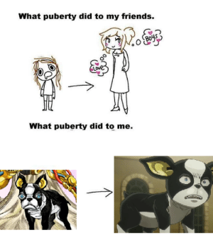 Puberty Did