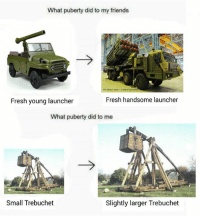 Fresh, Friends, and Memes: What puberty did to my friends  Fresh young launcher  Fresh handsome launcher  What puberty did to me  Small Trebuchet  Slightly larger Trebuchet