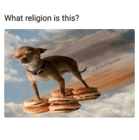 Funny, Girl Memes, and Religion: What religion is this?  offsupr I want in. @heckoffsupreme