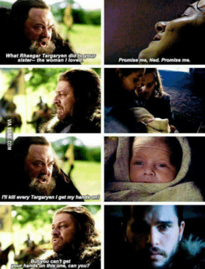 Fire, Of Ice and Fire, and Ice and Fire: What Rhaegar Targaryen did  your  sister-the woman Iloved  Promise me, Ned. Promise me.  ll kill every Targaryen I get my handson  your hands on this ono, can you? A Son of Ice and Fire