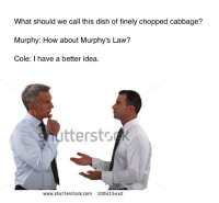 "Memes, Dish, and Http: What should we call this dish of finely chopped cabbage?  Murphy: How about Murphy's Law?  Cole: I have a better idea.  snutterstsdk  www.shutterstock.com 108415442 <p>Coleslaw memes on the rise but expected to fizzle out quickly, buy in and cash out via /r/MemeEconomy <a href=""http://ift.tt/2m72BIc"">http://ift.tt/2m72BIc</a></p>"