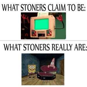 https://t.co/nb5YorliC6: WHAT STONERS CLAIM TO BE:  WHAT STONERS REALLY ARE: https://t.co/nb5YorliC6