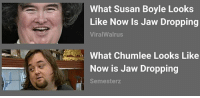 jaw drop: What Susan Boyle Looks  Like Now Is Jaw Dropping  Viral Walrus  What Chumlee Looks Like  Now is Jaw Dropping  Semester z