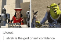 Animals, Confidence, and Donkey: what that  Wall, thats not very nice.  Its hideous  Its just a donkey  totonut:  shrek is the god of self confidence Savage  ~ Anime & Cartoon Universe