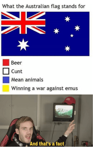 thats a fact: What the Australian flag stands for  Beer  Cunt  Mean animals  Winning a war against emus  And that's a fact