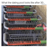 Dating, Memes, and Pool: What the dating pool looks like after 30.  @wittyidiot  WI Still gonna swipe right on all of them (@wittyidiot)