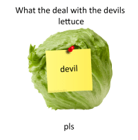 Devils Lettuce: What the deal with the devils  lettuce  devil  @webeboolin  Is