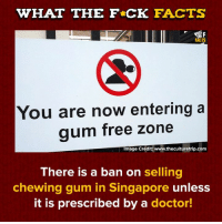 Dank, Doctor, and Facts: WHAT THE F CK FACTS  FACTS  You are now entering a  aum free zone  Image Credit: www.theculturetrip.com  There is a ban on selling  chewing gum in Singapore unless  it is prescribed by a doctor!