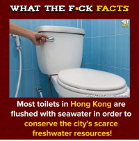 Dank, Facts, and Lol: WHAT THE F CK FACTS  NCR  lmage Credits www.cen acs.org  Most toilets in Hong Kong are  flushed with seawater in order to  conserve the city's scarce  freshwater resources! Yeah so don't drink from it lol