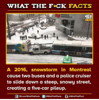 snowstorm: WHAT THE FCK FACTS  BANQUE  NATIONALE  FACTS  moge source CBC  A 2016, snowstorm in Montreal  cause two buses and a police cruiser  to slide down a steep, snowy street,  creating a five-car pileup.  FB.com/WhatThe Facts  @WhatTheFFacts  @WhatTheFFact