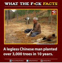 Dank, Facts, and Blogspot: WHAT THE FCK FACTS  FACTS  magesourcestillrocksolid.blogspot.com  A legless Chinese man planted  over 3,000 trees in 10 years.  FB.com/WhatTheFacts  @WhatTheFFacts  adiplywtffacts