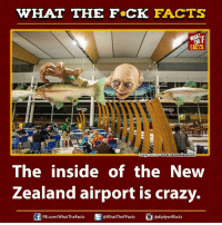 Crazy, Dank, and Ed, Edd N Eddy: WHAT THE FCK FACTS  FACTS  www.newzealand.com  mage Source The inside of the New  Zealand airport is crazy.  U Ed @WhatTheFFacts  FB.com/WhatThe Facts  adiplywtffacts