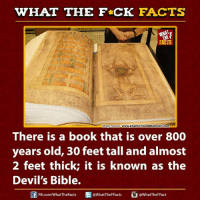 Books, Dank, and Facts: WHAT THE FCK FACTS  FACTS  www.phantomsandmonsters.com  mage Source  There is a book that is over 800  years old, 30 feet tall and almost  2 feet thick; it is known as the  Devil's Bible.  @What TheF Facts  @WhatTheF Fact  FB.com/WhatTheFacts
