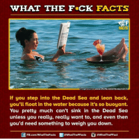 Dank, Facts, and Lean: WHAT THE FCK FACTS  Image source www.oferte vacante sejururi.ro  If you step into the Dead Sea and lean back,  you'll float in the water because it's so buoyant.  You pretty much can't sink in the Dead Sea  unless you really, really want to, and even then  you'd need something to weigh you down.  FB.com/WhatThe Facts  @What'TheFFacts  a WhatTheFFact