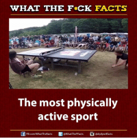 Dank, Facts, and Sports: WHAT THE FCK FACTS  The most physically  active sport  adiplywtff acts  FB.com/WhatThe Facts  WhatTheFFacts