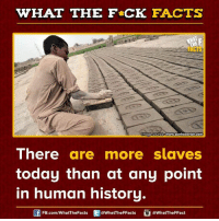 Dank, History, and 🤖: WHAT THE FCK FACTS  wwwwww.sonhaberler.com  mage Source  There  are more slaves  today than at any point  in human history.  @WhatTheFFact  FB.com/WhatThe Facts  @WhatTheFFacts