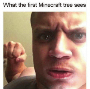 Dank, Memes, and Minecraft: What the first Minecraft tree sees Pro gamer moves by theartofbored MORE MEMES