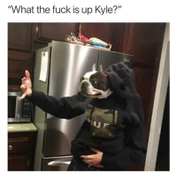 """Fuck, Nick, and Dank Memes: """"What the fuck is up Kyle?"""" @nick_colletti"""