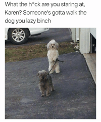 Damn Karen 🤦♂️😂 https://t.co/HM5d2BwFNw: What the h*ck are you staring at  Karen? Someone's gotta walk the  dog you lazy binch Damn Karen 🤦♂️😂 https://t.co/HM5d2BwFNw