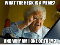 Be Like, Grandma, and Meme: WHAT THE HECKIS A MEME?  AND WHY AM I ONEOFTHEM  imgflip.com awesomesthesia:  My grandma be like