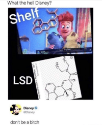 Bitch, Disney, and Fuck: What the hell Disney?  Shelf  Il  LSD  Disney  @Disney  don't be a bitch disney doesn't fuck around